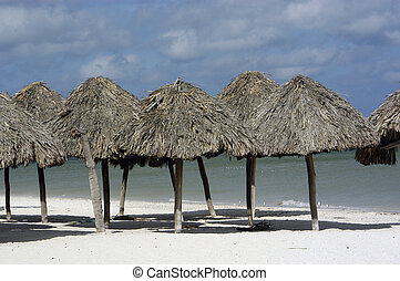 Mexican Umbrellas - A group of sun shelters on the beach...