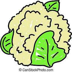 cauliflower isolated on white drawn in toddler art style