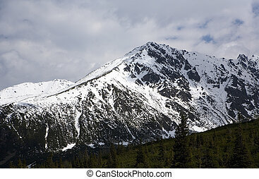Tatry - Mountains. Picture taken in Tatry mountains in...