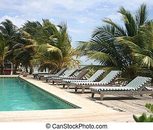 Tropical Paradise - beautiful tropical resort pool and deck...