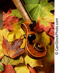 Maple Tree to Violin - vertical detail of violin scroll and...