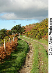 Farm Track - A winding farm track in the autumn surrounded...