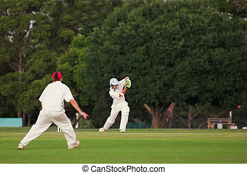 Cricket #5 - Cricketers playing in the late afternoon