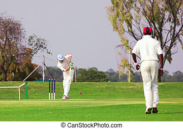 Cricket player hitting ball - Cricketers playing in the late...