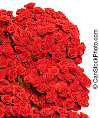 Bouquet of Red Roses - Large bouquet of Red Roses Isolated...