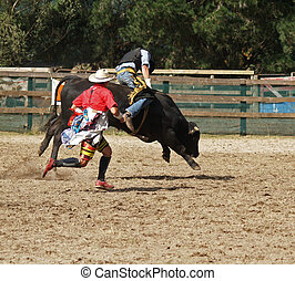 cowboy and Clown - A cowboy riding a steer during a rodeo...