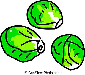 sprouts - three leafy green sprouts isolated on white drawn...