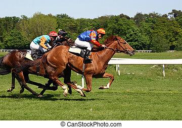 Horserunning - Germany, Frankfurt