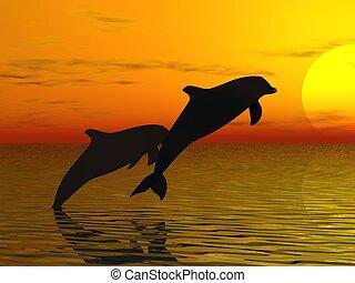 swimmind, delfines