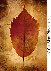 warm vintage background with leaf - great old grunge paper...