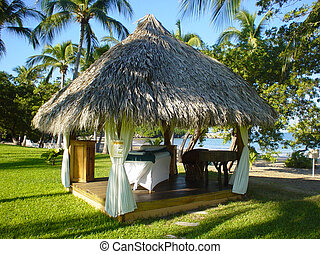 Hut in Mexico - Straw hut on beach in Ixtapa, Mexico Read...