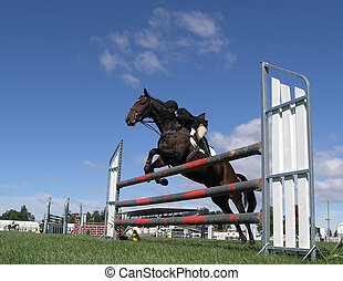 Going Up - A horse clearing a jump at the Horse of the Year...