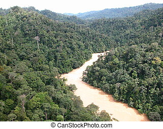 Tropical rainforests - Aerial view of tropical rainforest in...