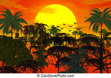 sunset over jungle