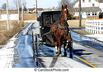 Amish buggy near Lancaster, PA February 2007