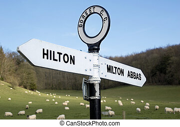Direction Sign - Direction sign in rural dorset with sheep...