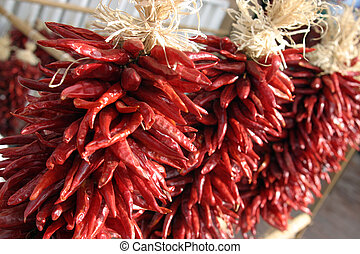 Santa Fe chilies - red and spicy bunch