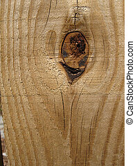 Knot of wood - A wood knot with grain on a plank
