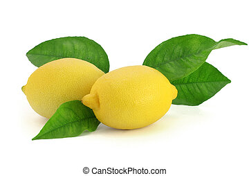Fresh lemons with leaves - Pair of fresh lemons with a few...