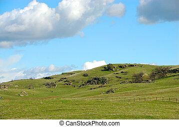 Grassy Hills and Knolls of Farmland in California - Farmland...