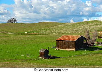 Barn and Shed on a Grassy Knoll in California, USA - Farm in...