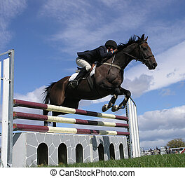 Black Beauty - A horse clearing a jump. Taken at the Horse...