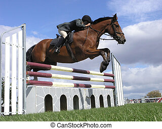 Big Bay - A horse clearing a jump. Taken at the Horse of the...