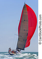 Full Sail Power - A fully crewed racing yacht with a red...