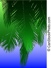 Coconut fronds - Design of hanging coconut palm fronds