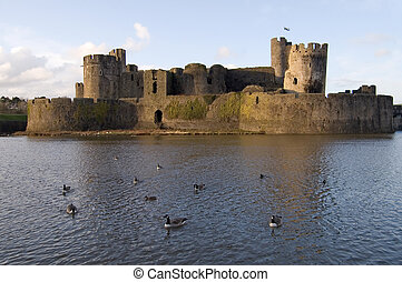 Birds in the Moat - Geese and ducks floating in the moat of...