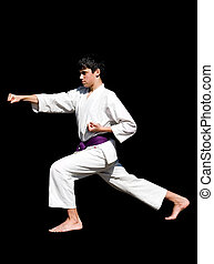 karate kid - different kata postures, kicks, isolated,...