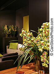 orchids in interior