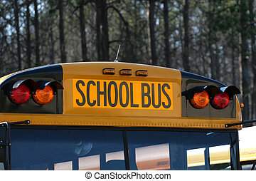 School Bus - The Top of a yellow shcool bus