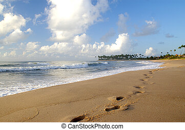 footprints in sand - footprints in the sand of an isolated...