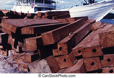 Square logs or flitches are timber cut into squares for easy...