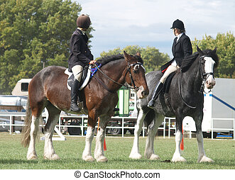 Two Clydesdales - Two competitors mounted on Clydesadles...