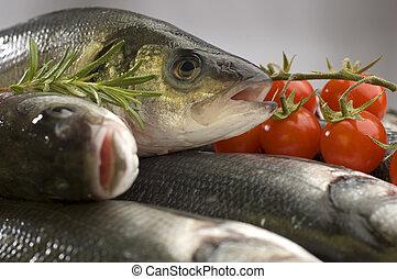 bass - fresh sea bass fish with tomatos close up