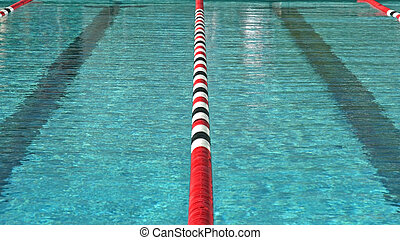 Swim Meet - A high school swim meet and the athletes who...