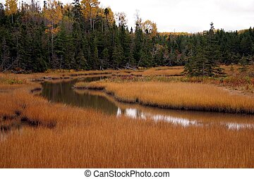 Quiet Creek near Southside Antigonish Harbour, Antigonish...