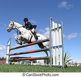 White Show Jumper - A horse clearing a jump at the Horse of...