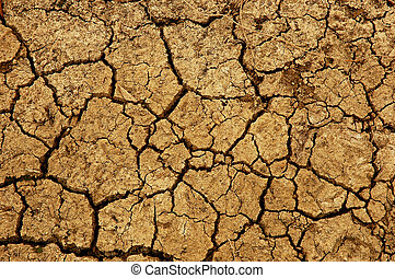 Dry Cracked Earth depicting severe drought conditions