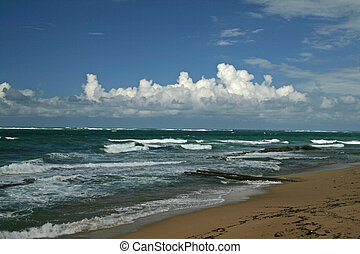 puerto rico beach - beach photo of puerto rico