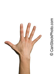 Open back hand - The five fingers of a open palm hand