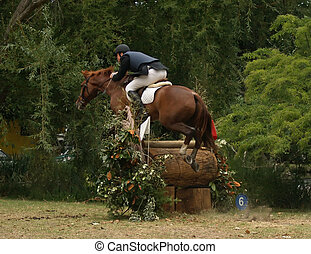 Cross Country Jumper - A horse clearing a narrow cross...