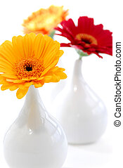 Interior design vases - Three vases with gerbera flowers...