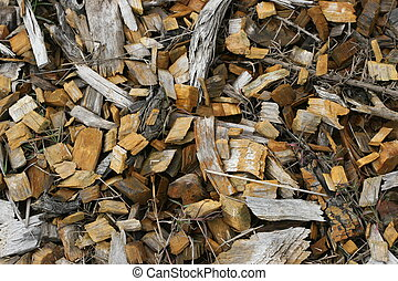 Wood Chips - Left over wood chips from a cut tree