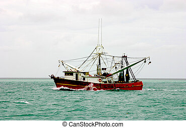 Shrimp Boat in Action - Shrimp boat making its way through...