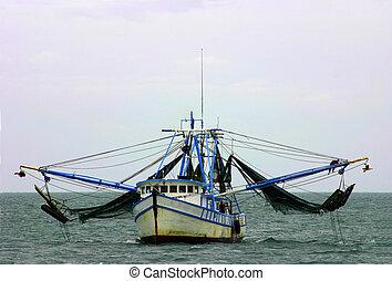 camarón, barco