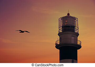 Bolderaja Riga, Latvia Lighthouse in sunset and flying...