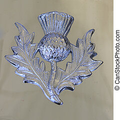 Scotch Thistle - A silver buckle with a Scotch thistle...